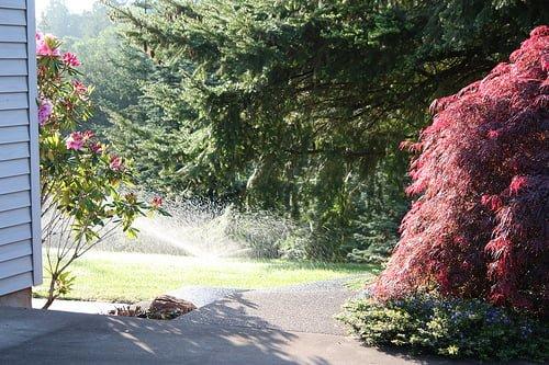 sprinkler spring